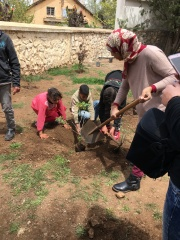 The students planted over 15 new trees in the park.